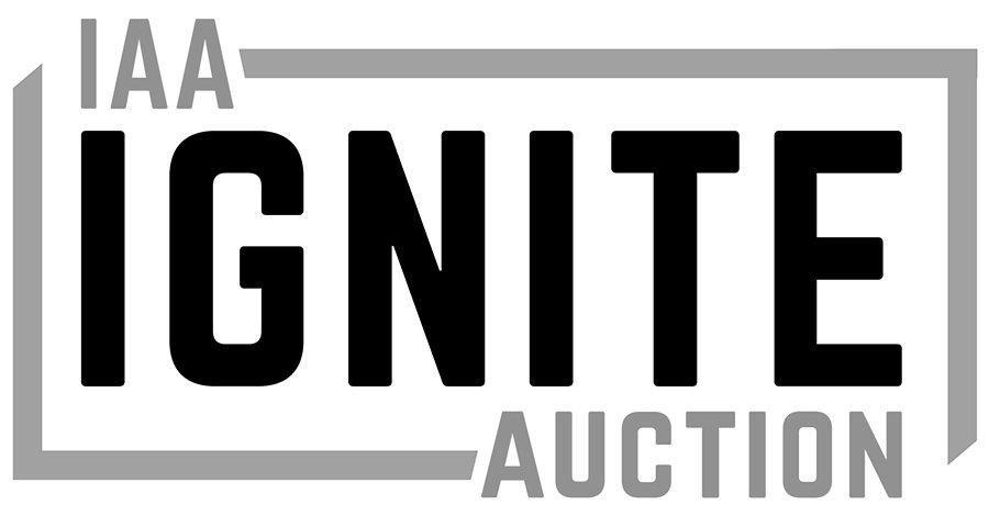 Insurance Auto Auctions Inc Sec Registration