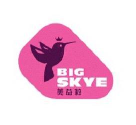 Trademark Logo BIG SKYE