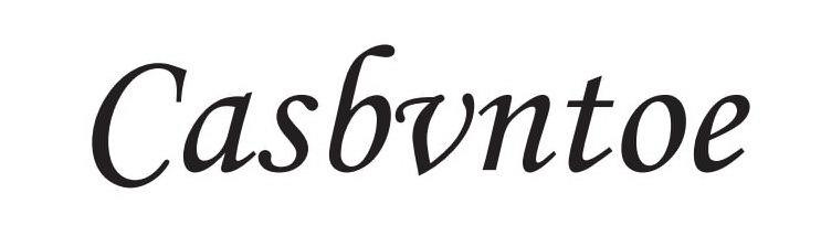 Trademark Logo CASBVNTOE